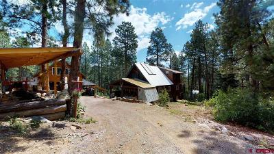 Durango CO Single Family Home For Sale: $349,875