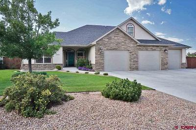 Montrose County Single Family Home For Sale: 3272 Monte Vista