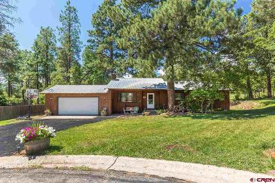 Durango CO Single Family Home For Sale: $329,900