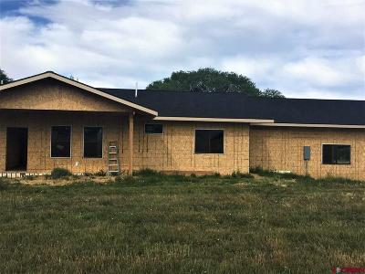 Mancos Single Family Home For Sale: 39820 Road J