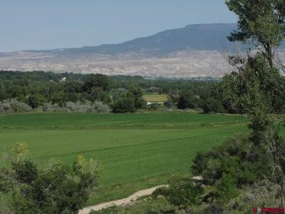 Delta Residential Lots & Land For Sale: 16420 D25