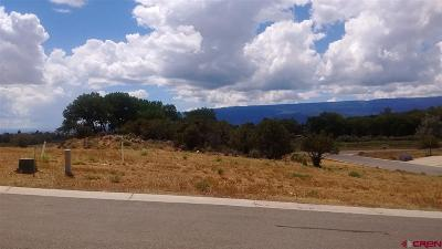 Cedaredge Residential Lots & Land For Sale: 550 SE Pine