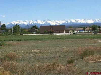 Montrose Residential Lots & Land For Sale: 6700 Rd & Cirque Way