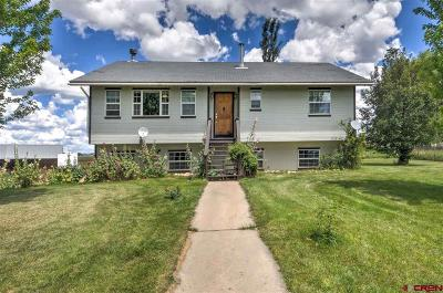 Mancos Single Family Home For Sale: 40905 Road G