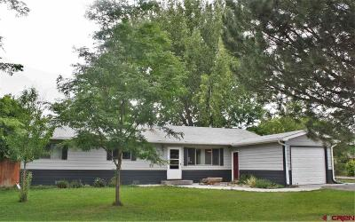 Delta County Single Family Home NEW: 510 Aspen