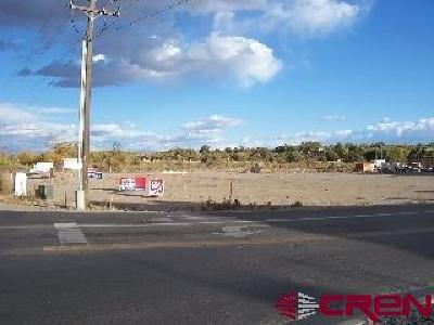 Delta County, Montrose County Residential Lots & Land Back on Market: 680 Stafford