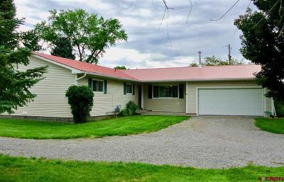 Montrose Single Family Home For Sale: 68177 Utopia Lane
