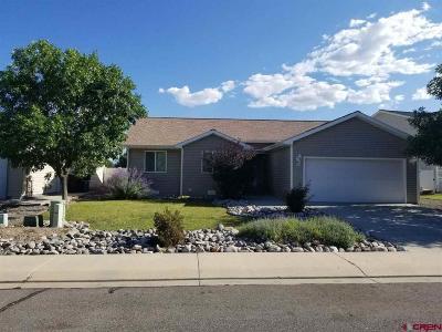 Delta County, Montrose County Single Family Home NEW: 1216 Hemlock