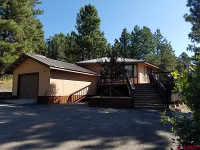 Pagosa Springs Single Family Home For Sale: 17 N Debonaire