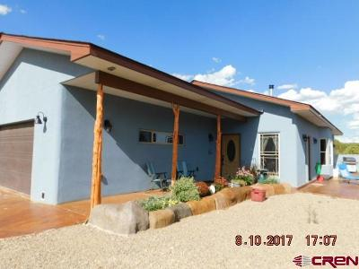Single Family Home For Sale: 10878 S Road 8