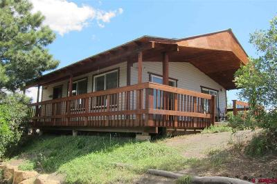 Pagosa Springs Single Family Home For Sale: 493 Bobcat Lane