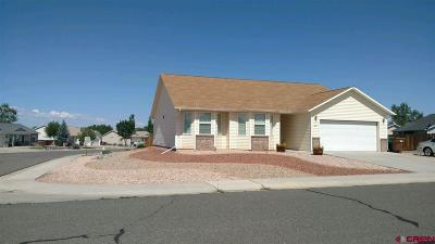 Montrose County Single Family Home NEW: 3227 Meadows