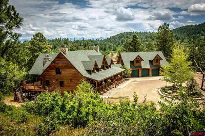 Pagosa Springs Single Family Home For Sale: 389 W Caywood Ranch