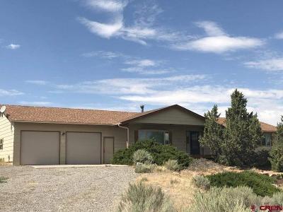 Montrose Single Family Home NEW: 65355 Solar