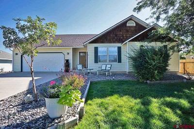 Montrose Single Family Home NEW: 68154 Tumbleweed