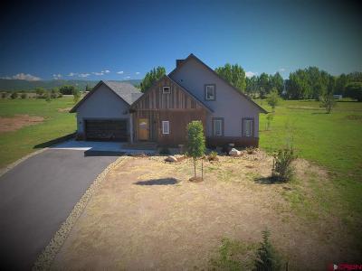Durango Single Family Home For Sale: 209 Encantado
