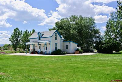 Montrose Single Family Home NEW: 62954 Niagara