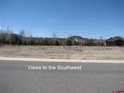 Montrose Residential Lots & Land For Sale: 3908 Mount Hayden