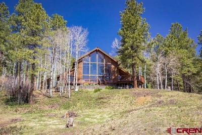Pagosa Springs Single Family Home For Sale: 645 Bear Run
