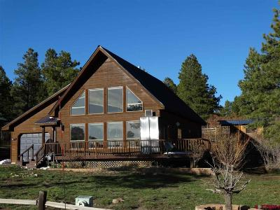 Pagosa Springs Single Family Home For Sale: 302 Woodland Drive