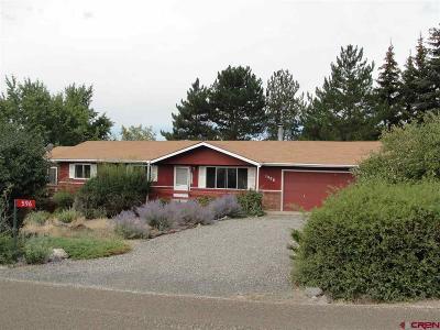 Cedaredge Single Family Home For Sale: 596 NE Ginters Grove
