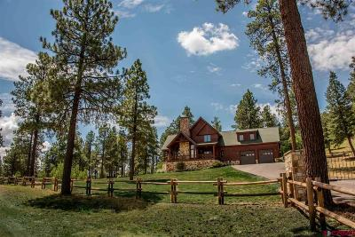Pagosa Springs Single Family Home For Sale: 3201 County Rd 302
