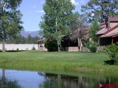 Pagosa Springs Condo/Townhouse For Sale: 217 Pinon Causeway #3008