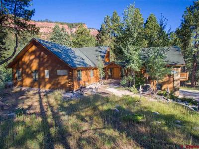 La Plata County Single Family Home For Sale: 55 Starwood