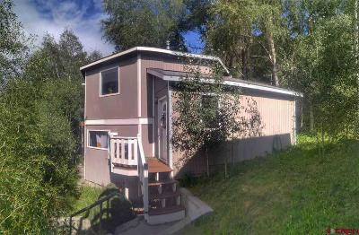 Telluride Single Family Home For Sale: 201 Hillside Lane