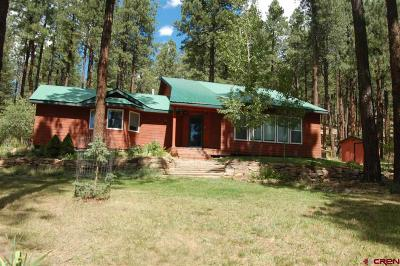 La Plata County Single Family Home For Sale: 1687 Pine Valley Rd