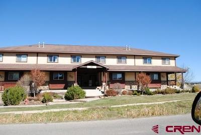 Pagosa Springs Condo/Townhouse For Sale: 61 Lakeside Dr #A1