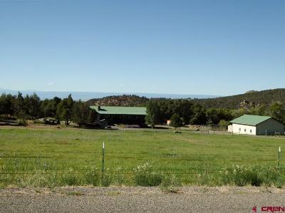 Cedaredge Farm For Sale: 20652 Brimstone Road