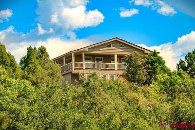 Pagosa Springs Single Family Home For Sale: 1649 Carino