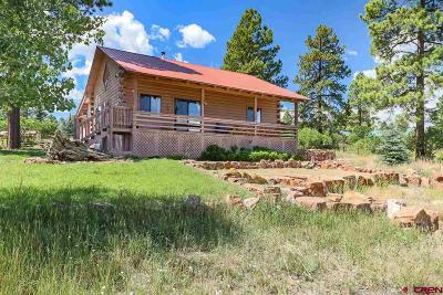 Pagosa Springs Single Family Home For Sale: 86 Trinity