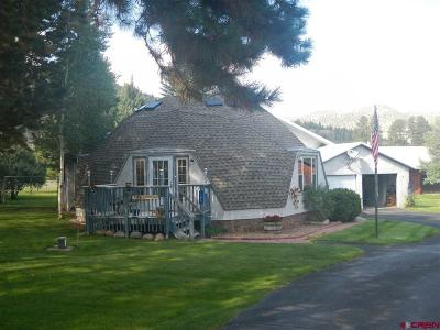 South Fork Single Family Home For Sale: 106 Conifer