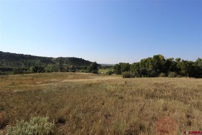 Bayfield Residential Lots & Land For Sale: 241 Emerald Heights Lane Lane