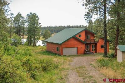 Pagosa Springs Single Family Home For Sale: 289 Spence Cabin