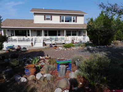 Single Family Home For Sale: 39881 Fruitland Mesa Road