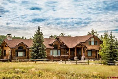 Pagosa Springs Single Family Home For Sale: 760 Wind Walker