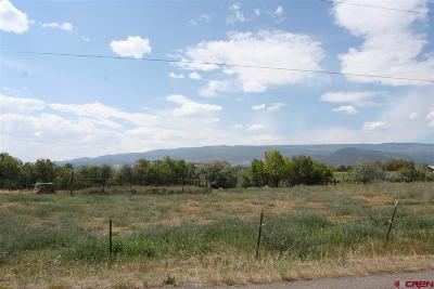 Cedaredge Residential Lots & Land For Sale: Bull Mesa Road