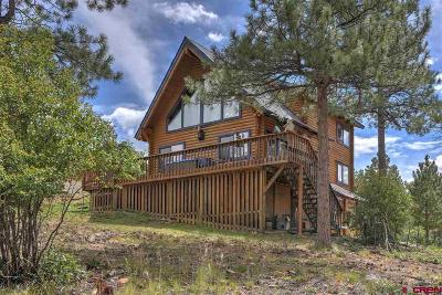 La Plata County Single Family Home For Sale: 922 Ridge