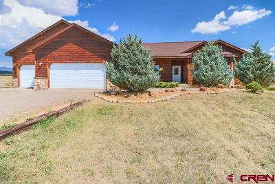 Pagosa Springs Single Family Home For Sale: 189 Bayview Circle