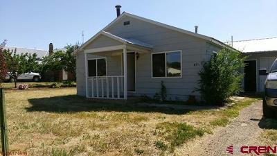 Single Family Home For Sale: 431 Guyrene
