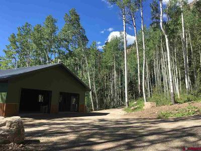 Durango Residential Lots & Land For Sale: 44451 N Us Hwy 550