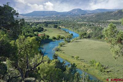 Durango Residential Lots & Land For Sale: 818 N Rainbow
