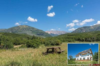 La Plata County Single Family Home For Sale: 699 Gold Bar