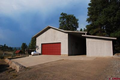 Pagosa Springs Single Family Home For Sale: 31 Indian Land