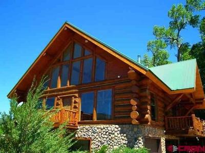 South Fork CO Single Family Home For Sale: $588,000