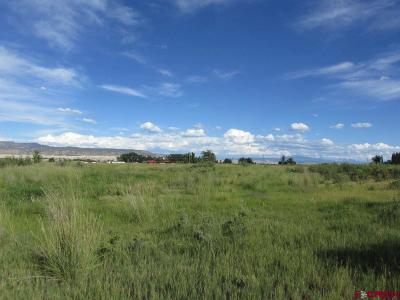 Olathe Residential Lots & Land For Sale: 59304 Banner