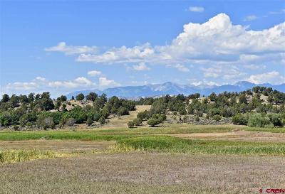 Durango Residential Lots & Land For Sale: 2645 Cr 510